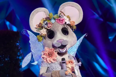 The Masked Singer Fox